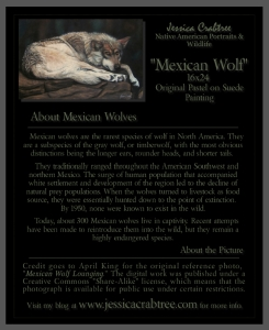 Mexican-Wolf-brochure