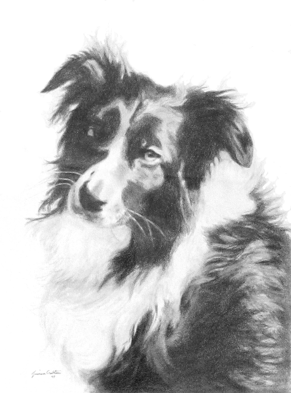 Libby (8x10 Ebony pencil) by Jessica Crabtree